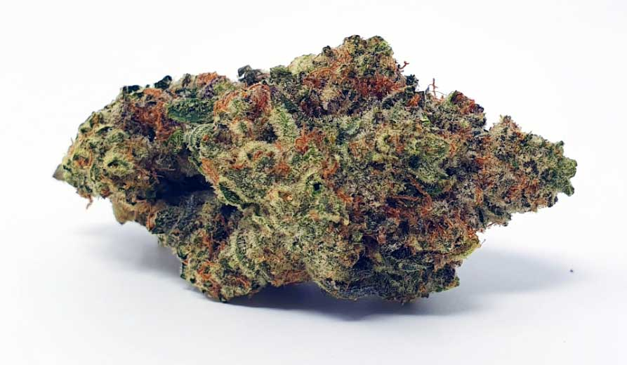 Ginger-Glue-Cannabis-bud