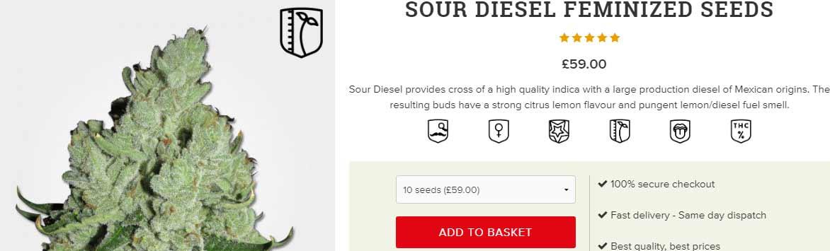 buy-Sour-Diesel-seeds-online