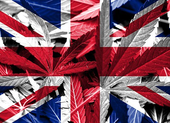 What Effect Will Brexit Have on the UK Cannabis Industry