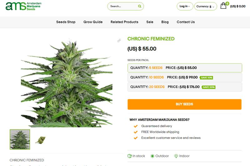 Amsterdam-Marijuana-Seeds-buy-chronic-weed-seeds-online