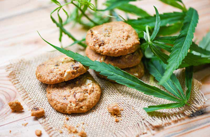 How-Long-Does-it-Take-for-Cannabis-Edibles-to-Kick-in