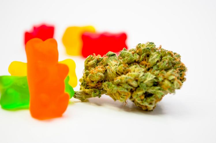 gummies and cannabis bud