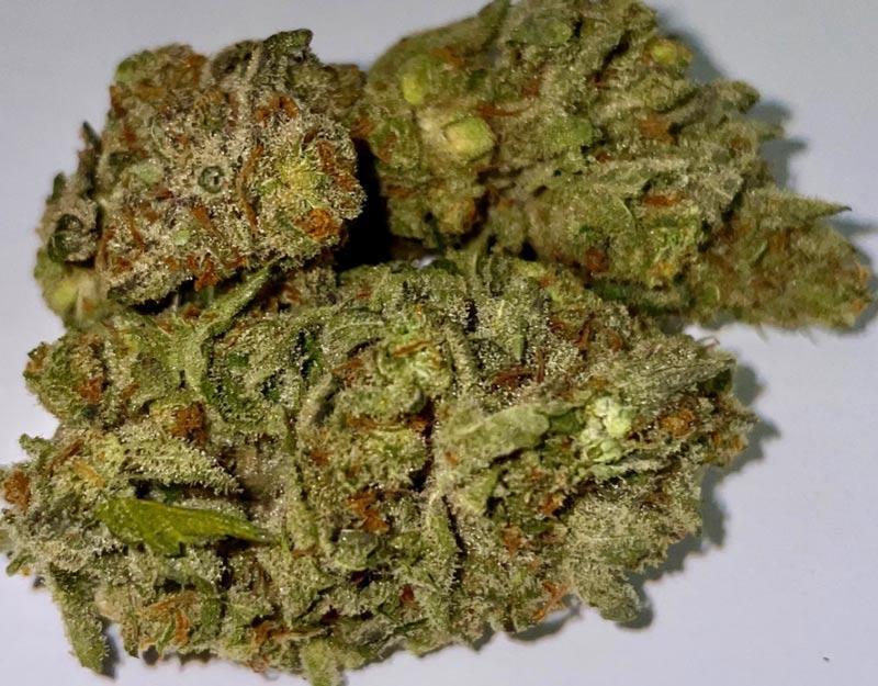 zookies-weed-bud